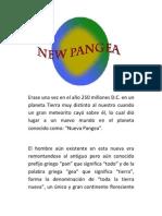 New Pangea