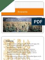 Amaranto Expo