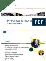 Diversitatea la locul de munca - prezentare