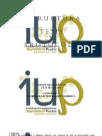 Partes de La Tesis Cosiderando El Libro La Investigacion Juridica, y Partes Del Protocolo Segun Buap y Iup