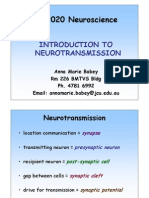 Intro to Neurotransmission - To View