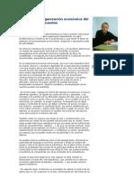 Estructura y organización económica del club