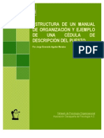 Estructura Manual Organizacion Cedula Descripcion Puestos