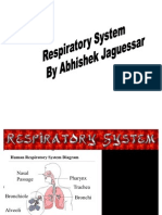 Respiratory System by Abhishek Jaguessar