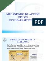 lactonas macrociclicas