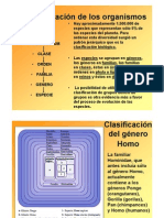5-La-clasificación-de-los-organismos-2011