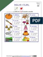 2) Singular y Plural (Arasaac)