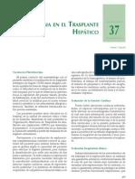 anestesia en trasplante hepático