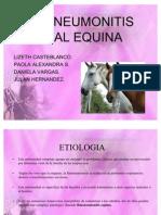 Expo Rinoneumonitis