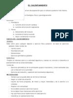 CALENTAMIENTO Y CFB