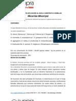 MYCORRIZAS Formas de Aplicacion