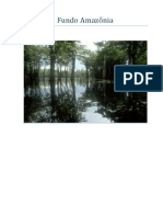 Fundo Amazonia 2008 95
