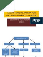 algoritmo anemias