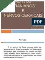 NERVOS CRANIANOS E NERVOS CERVICAIS