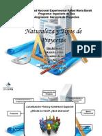 Naturaleza y Tipos de Proyectos