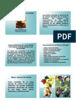 pLANTAS_CULTIVADAS1A