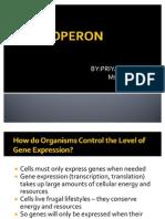 The Operon