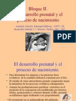 El Desarrollo Prenatal