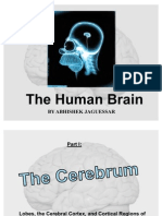 Human Brain by Abhishek Jaguessar