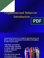 Organizational Behavior Introduction