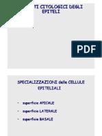Specializzazioni Cell 2011