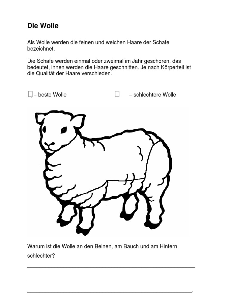 Arbeitsblatt Wolle