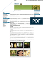 Agriculture __ Mineral Nutrition __ Physiological Disorder 13