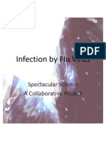 Infection by Flu Virus