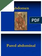 anatomiadelabdomen-110114100141-phpapp02