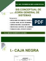 Teoria General de Sistemas Final 1210564721121248 9