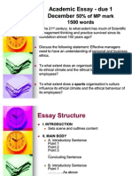 Academic Essay Guidelines