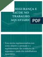 NR 30 -SEGURANÇA E SAÚDE NO TRABALHO