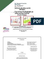 Orientaciones_Pedagogicas_ini