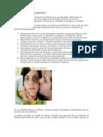 El abuso y la violencia doméstica