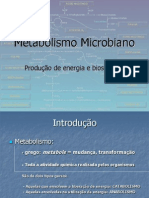 6aulaMetabolismomicrobiano