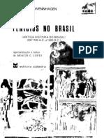 Fenicios no Brasil - Antiga História do Brasil -de 1100 aC a 1500 dC - parte 1 - Ludwig Schwennhagen