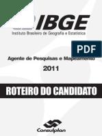 Consulplan_manual Do Candidato Ibge Apm - Brasil - A8874