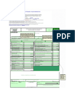 Plantilla Basica Formula Rio 210 Para DR Con Anexos
