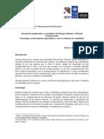 Elección de magistrados y autoridades del Órgano Judicial y Tribunal Constitucional - Farit Rojas