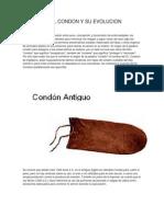 Historia Del Condon y Su Evolucion