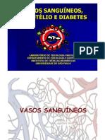 Aula Vascular Diabetes