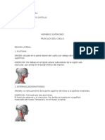 CARTILLA DE ANATOMIA