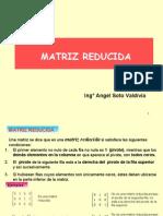 MATRIZ_REDUCIDA_