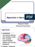 Apraxias e agnosias