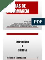 SES 2011 - Teorias de Enfermagem e SAE