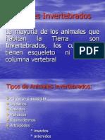animales-invertebrados-5-1192986413900762-2