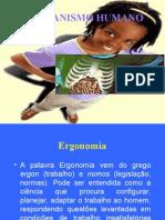 o_organismo_humano