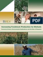 8 Increasing Biofuels Feedstock Production