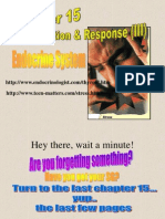 2011 E-Learning Chap 15-Endocrine System - Copy