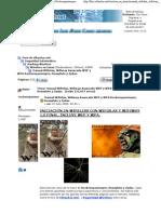 Manual Wifislax, Wifiway Avanzado WEP y WPA Rockeropasiempre Heavyloto y Zydas.